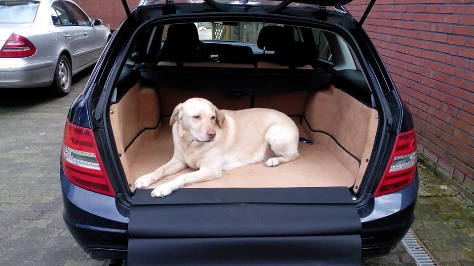 Bolder Polsterei und Sattlerei - Kofferraum Schutz für Hunde